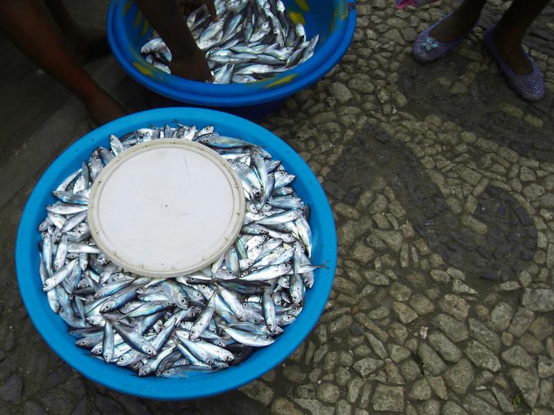056 - 2008-09-23-25 - Cape Verde