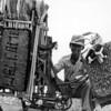 065 - 1987-02 - Jakarta