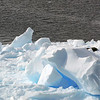 Leopard seals on an iceberg in Neko Harbour, Mainland Antarctic Peninsula