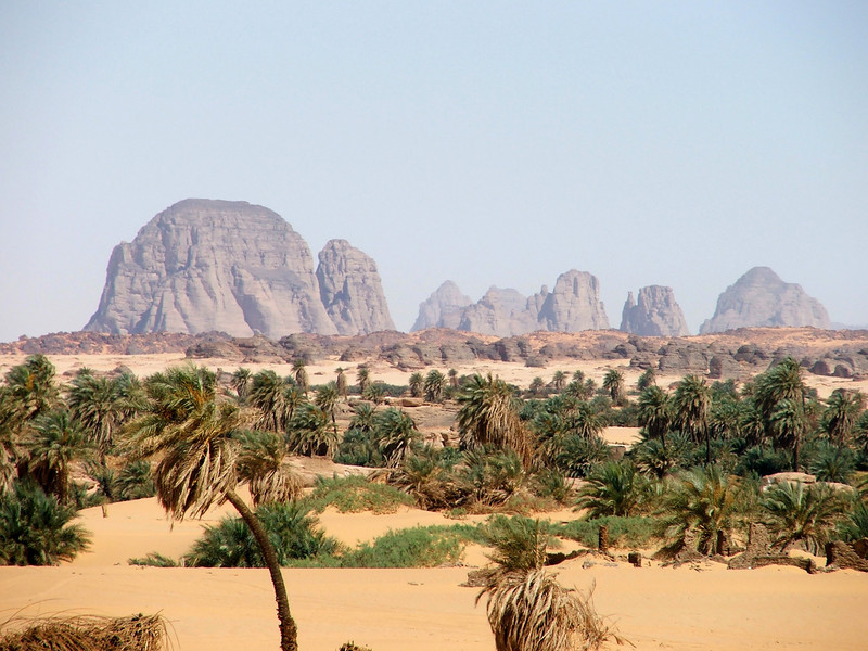 155 - 2006-03 - Niger