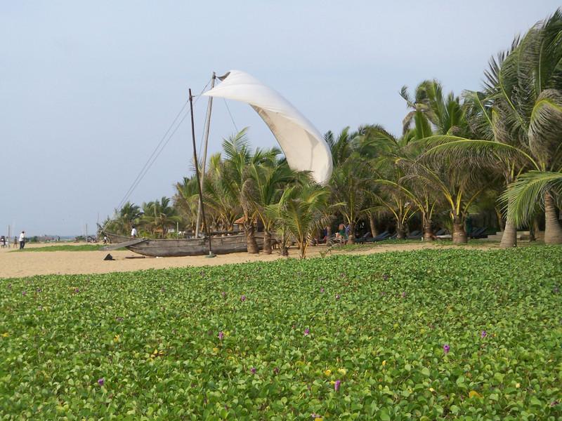 221 - 2007-11 - Sri Lanka