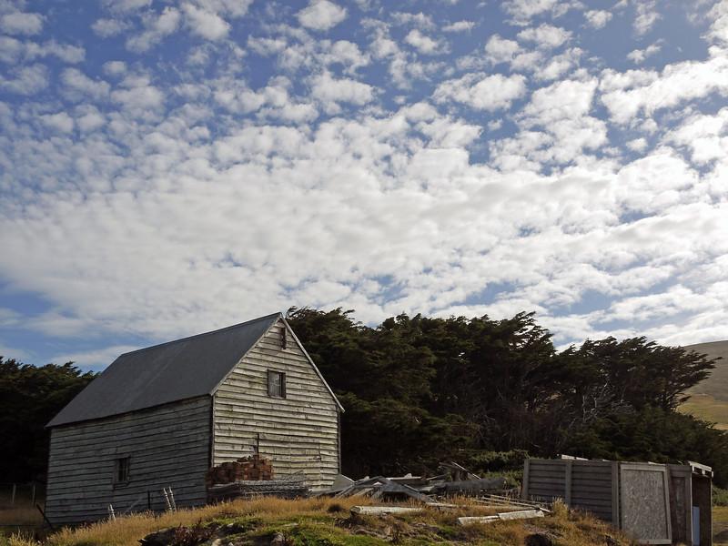 Modest homestead and farmlands on Carcass Island, Falkland Islands