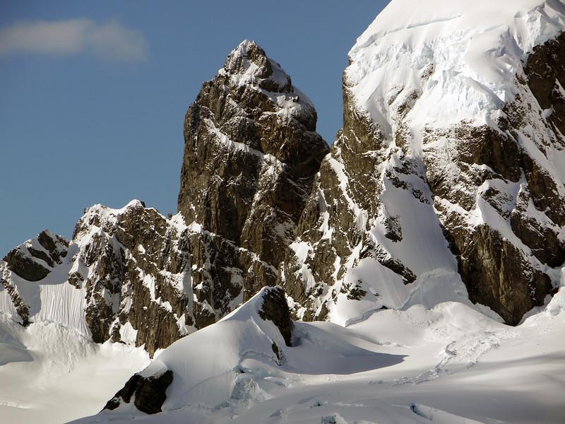 """Gerkin"" look-alike at Cuverville Island, mainland Antarctic peninsula"
