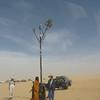 194 - 2006-03 - Niger