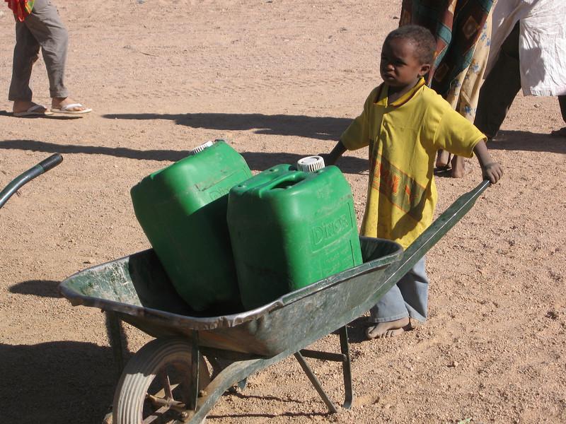 338 - 2006-03 - Niger
