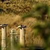 1694 - 2009-07 Turkey (Ephesus)