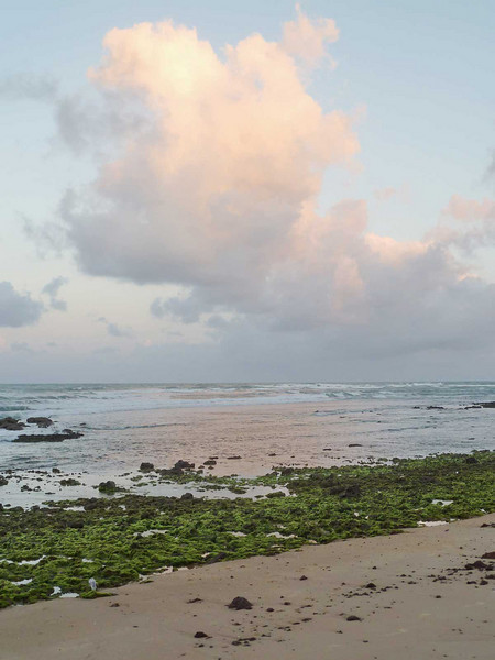Sunset on Sibaúma beach, Tibau do Sul, south of Natal, Rio Grande do Norte, Brasil