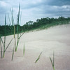 020 - 1983-06 - Indiana Dunes