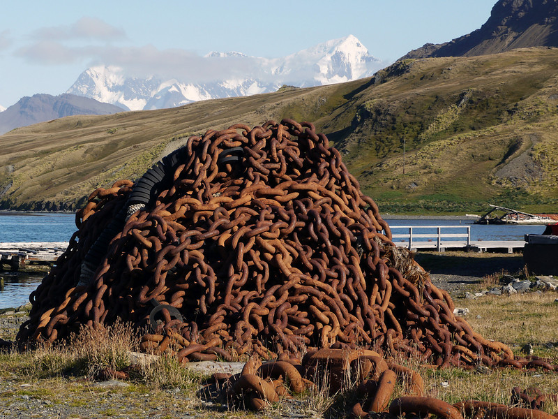 Mountain of whale chains in Grytviken, South Georgia, British Sub-Antarctic Territory