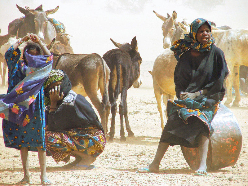 245 - 2006-03 - Niger