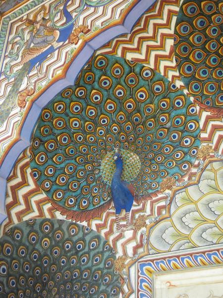 0291 - F - 185 - 2008-09 India Jaipur