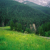 099 - 2002-06 - Zernez & St Moritz