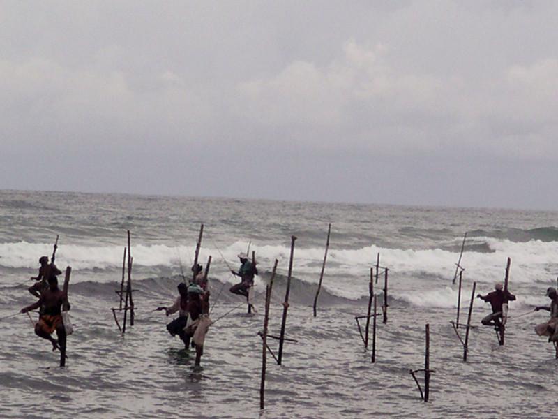 Stilt Fishermen near Galle - 2003-05 - Sri Lanka