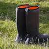 Swap the waterproof boots for hiking boots on New Island, Falkland Islands