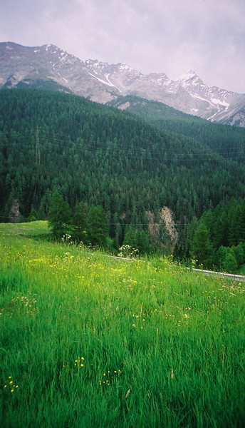 Countryside of the Engadine valley between Zernez and St Moritz, Switzerland.