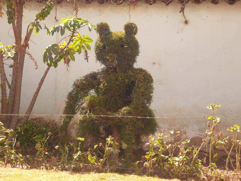 Novelty topiary lines the roadside in the Urubamba valley, Peru.