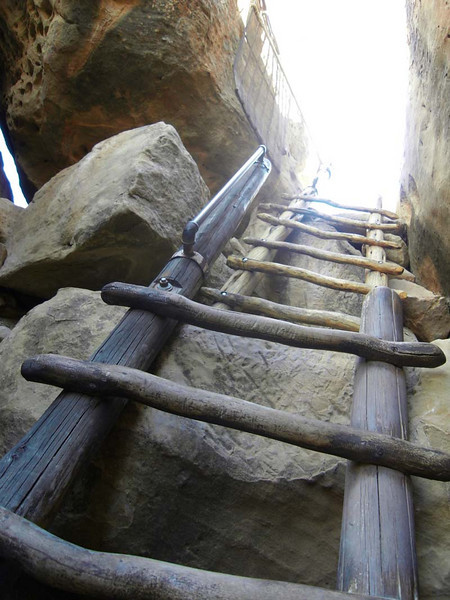 Escape ladder to the real world from Mesa Verde, Colorado