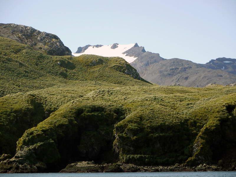 Dramatic hillsides and mountains of Elsehul, South Georgia, British Sub-Antarctic Territory