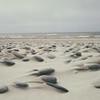 Sand swept stones line the shores of the North Sea in Gronnestrand, Jutland Denmark.