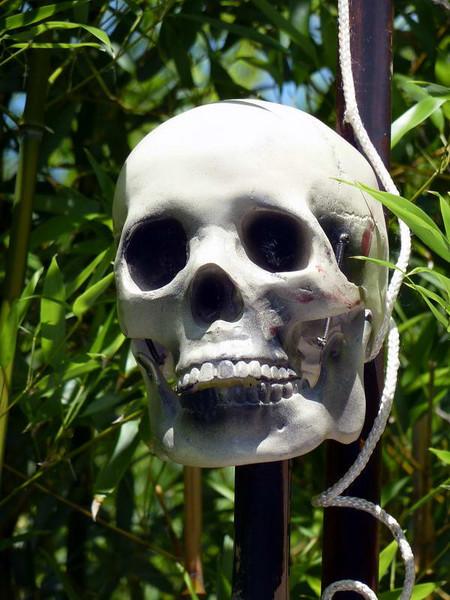 "Previous customer at the ""Perils of the Lost Jungle"" mini golf range in Herndon, Virginia"