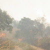 Ominous brush fires threaten wildlife, (and tourists!), in the national park in northern Cameroon
