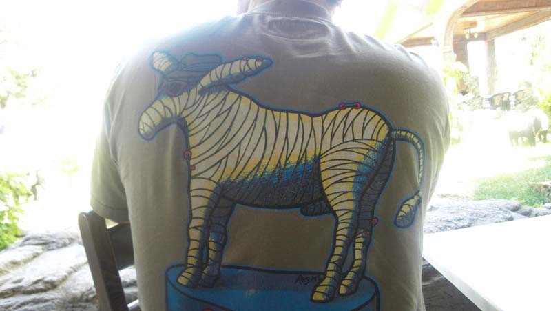 """Detail of Flip's favorite Mambo t-shirt: """"The Invisible Donkey"""""""