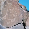 Prehistoric rock art along the escarpment in northwest Namibia