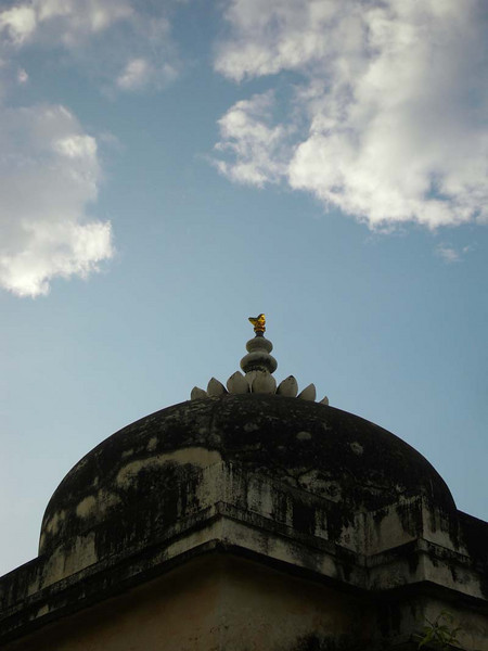 Rooftop detail in Chittaugaur, Rajastan India.
