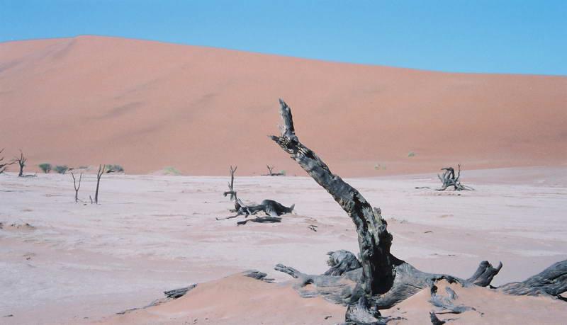 The deserted salt pan of Sossusvlei Namibia.