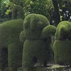 Creative topiary in the forested park surrounding Izalco volcano in western El Salvador.
