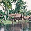 Typical riverside village on the upper Sepik; (no plastic!); Papua New Guinea.