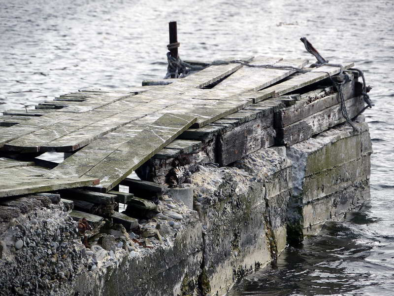 Abandoned pier on Carcass Island, Falkland Islands