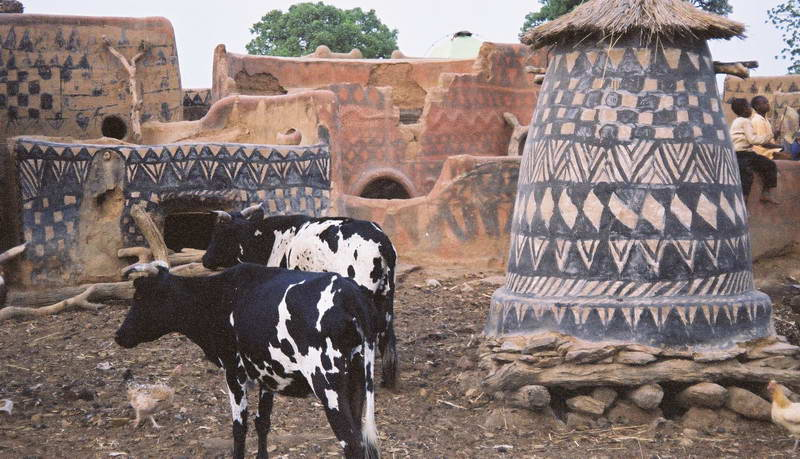 Cows imitate house painting, or vice versa in the Gurunsi village, Burkina Faso.