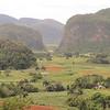 Luxuriant outcrops in the western province of Pinar del Rio, Cuba
