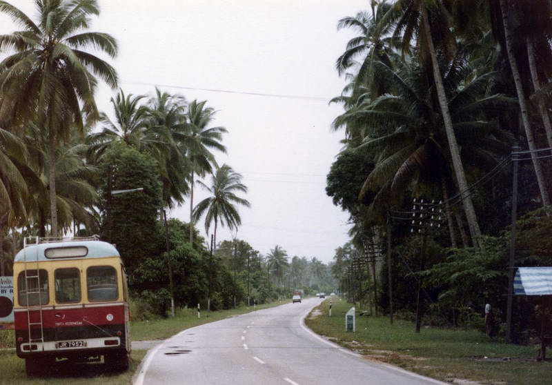 The wild and winding road to the Mersing Rest house, Mersing, Malaysia.