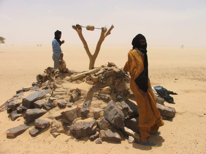 Community well in the Tenere desert