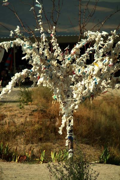 Wishing tree at the Devrent Pasa Baglari (Fairy Chimneys) in Kapydokia Turkey.