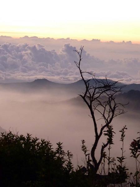 Sunrise in the Bromo Tengger Semeru national park in East Java Indonesia.
