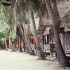 Pleasant huts on Chaweng beach in Koh Samui Thailand.