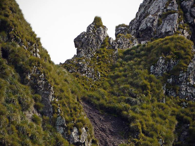 Craggy mountaintops of Elsehul, South Georgia, British Sub-Antarctic Territory