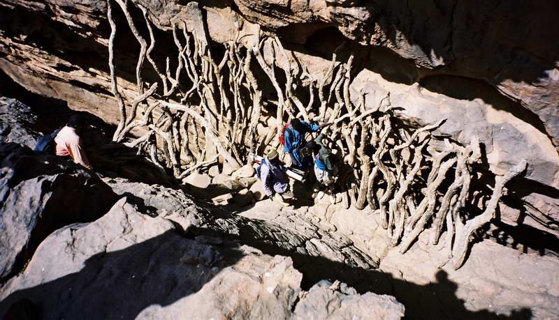 Beautifully crafted stick bridge across the bottom of a gully along the hike up to Dogon villages from the back of the escarpment