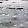 """""""Pancake ice"""" floats on top of the water in the bay at Detaille Island, Antarctic peninsula"""