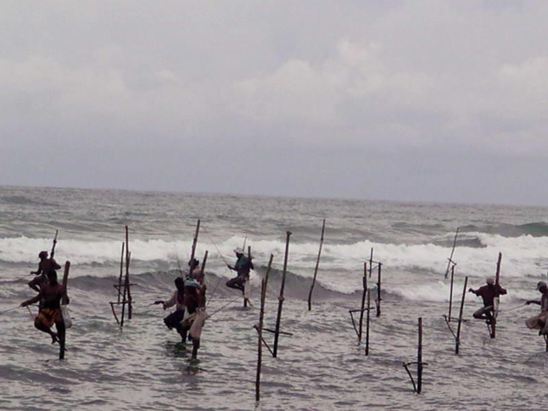 Stilt fisherman challenge the sea near Galle,Sri Lanka before the Tsunami
