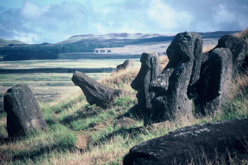 Cascading Moai on the sea facing slopes of Rano Raraku, Easter Island Chile