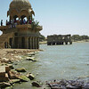 Hungry fish swarm the shores of a lakeside pavilion in Jaiselmer, Rajastan India.