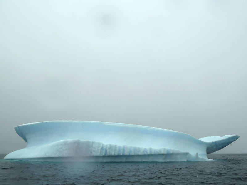 "Whale-like iceberg in the ""Icebergs Graveyard' in the Penola Strait near Booth Island, Antarctic peninsula"