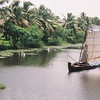 Silently sailing the inland waterways of Kerala, near Alleppey