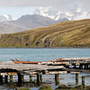 Derelict dock in Grytviken, South Georgia, British Sub-Antarctic Territory