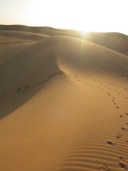 The pristine dunes at sunset near Bilma in the Tenere desert