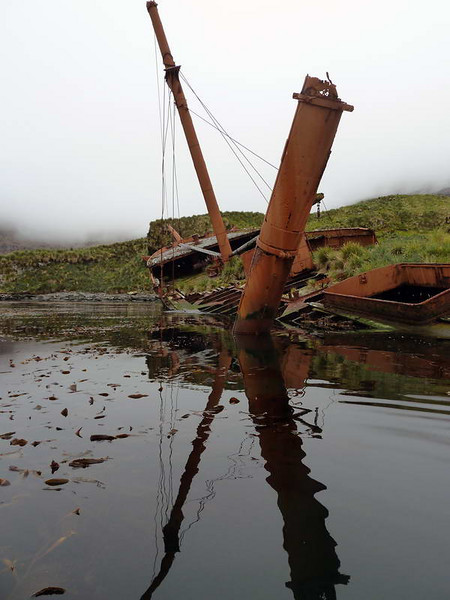 Abandoned whaling ship in Prince Olav Harbour, South Georgia, British Sub-Antarctic Territory